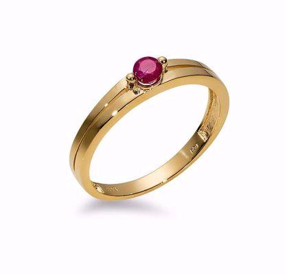 8277/6/08-guldring-rubin