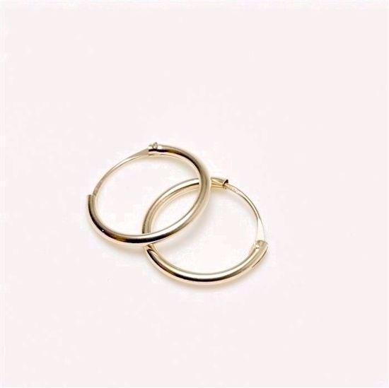 381215-guld-creol-øreringe-hoops