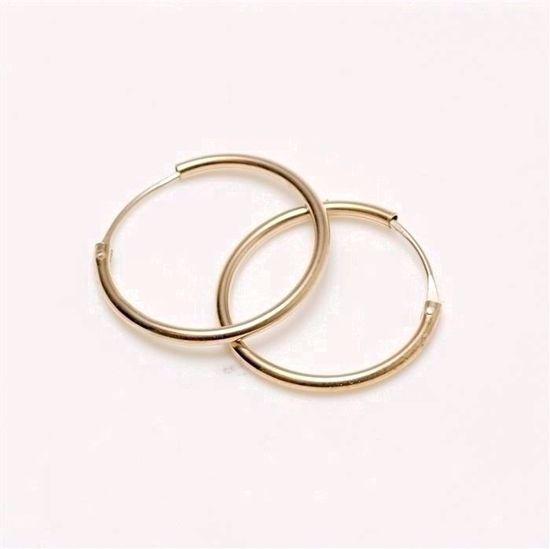 384015-guld-øreringe-hoops-creoler