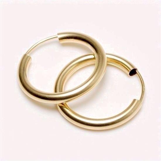 3803015-guld-hoops-creol-øreringe