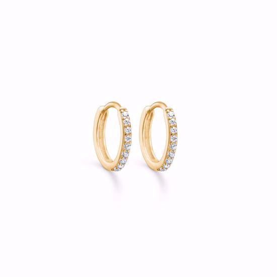 5561/08-guld-creoler-hoops-øreringe