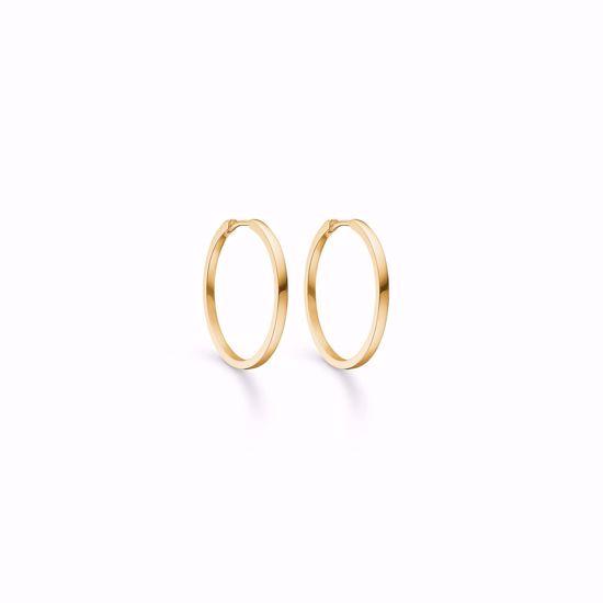 11250/f-sølv-forgyldt-creoler-hoops-loops-øreringe