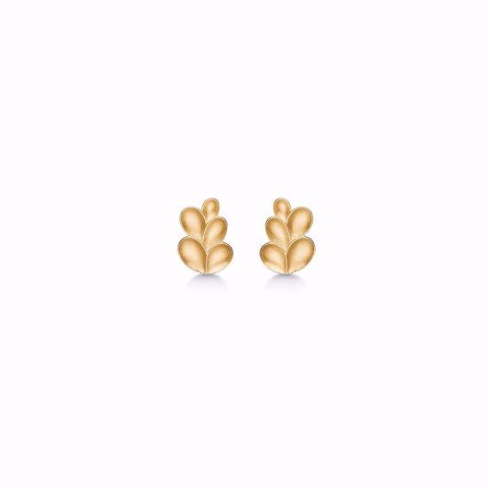 5570/08-guld-ørestik-øreringe-med-blade