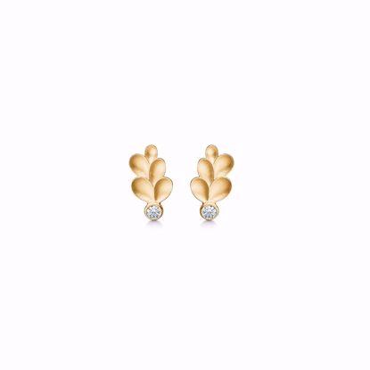 5571/08-guld-ørestik-øreringe-med-blade