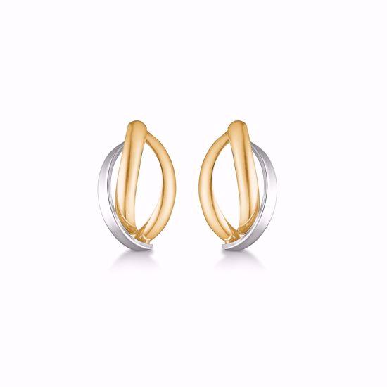 5556/08-guld-ørestikker-øreringe-2-farvet
