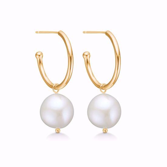 11284-sølv-forgyldt-creoler-øreringe-med-barok-perle
