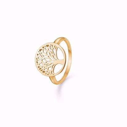 guld-ring-med-livets-træ-8kt-udskåret-træ-6377/08