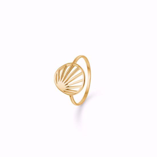 seville-sølv-forgyldt-ring-1950/2f