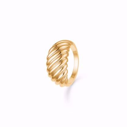 snoet-forgyldt-sølv-ring-1908/2f