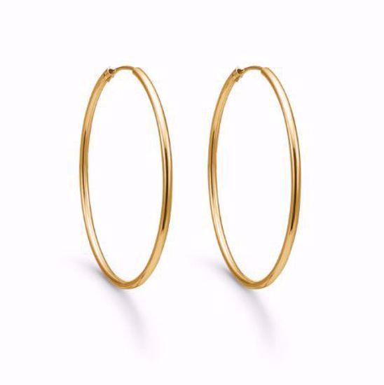 384315-guld-creol-hoops-øreringe