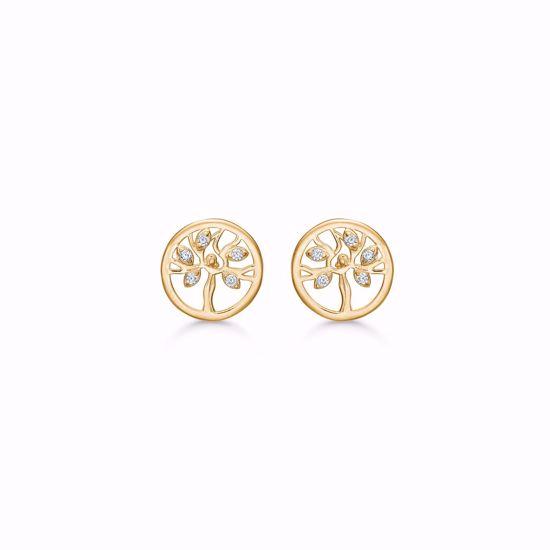 livets-træ-øreringe-ørestikker-i-guld-med-zirkonia-5586/08