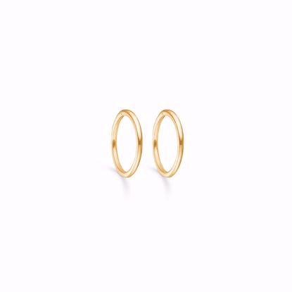 sølv-forgyldt-hoops-loops-creoler-11190/F