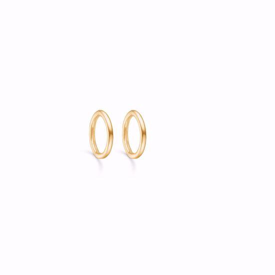 sølv-forgyldt-hoops-loops-creoler-11189/F