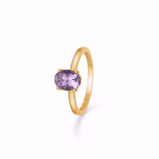 guld-ring-med-ametyst-8366/6/08