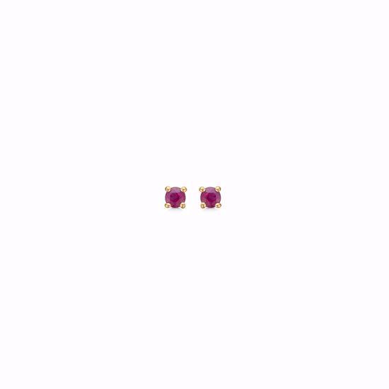 guld-øreringe-med-rubin-8371/5/08