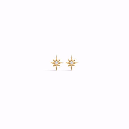 seville-guld-øreringe-med-zirkonia-sten-5609/08