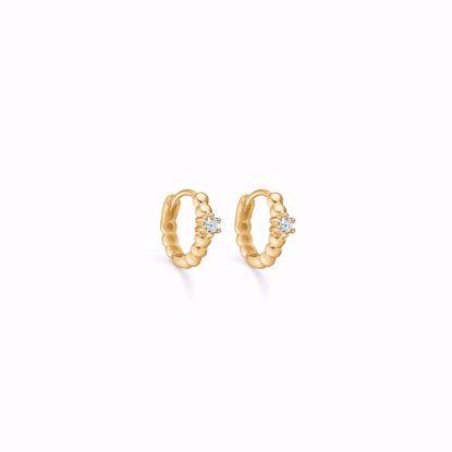 seville-guld-øreringe-med-zirkonia-sten-5623/08